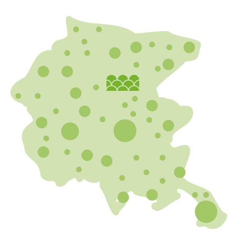 mappa-territorio-regionale